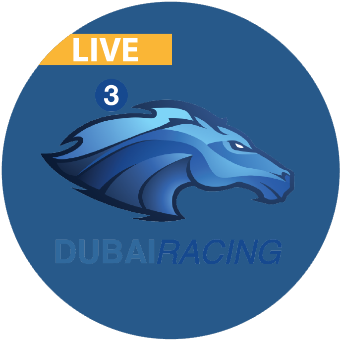Dubai Racing 3